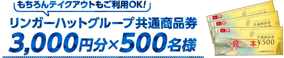 リンガーハットグループ共通商品券3000円分 × 500名様